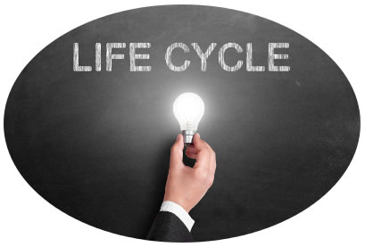 Life Cycle with a lightbulb that's lit