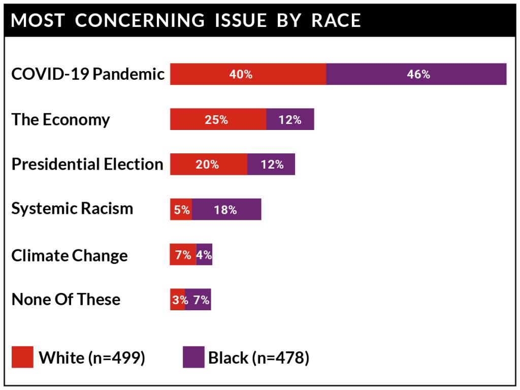COVID-19 survey: Concerns by Race